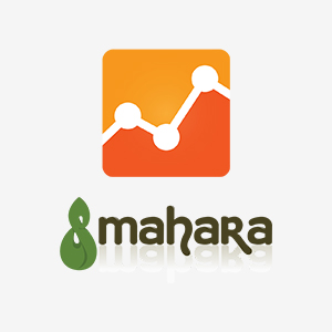 mahara-add-google-analytics-thumb